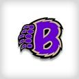 logo_briggs