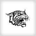 logo_franklincity