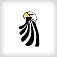 logo_springsvalley_in